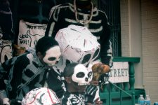 From Mardi Gras 2013, members of the North Side Skull and Bone Gang at the Backstreet Cultural Museum.